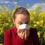 Wie wirkt sich Allergie auf das Autofahren aus